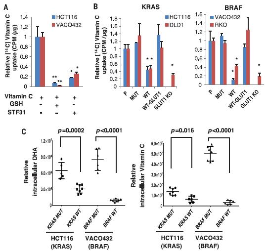 如何用维生素C和GAPDH讲述一个发在Science上的故事